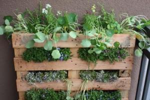palette-jardiniere